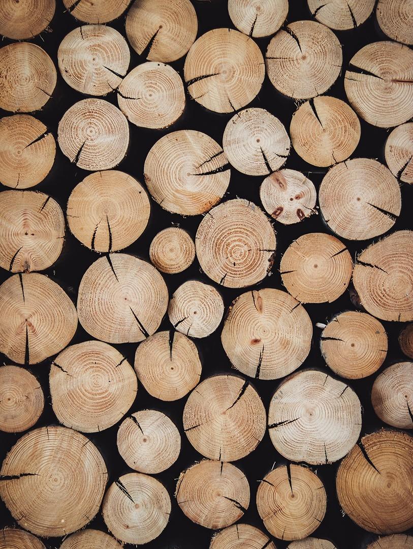 Descubre las maderas de SIKU Concept